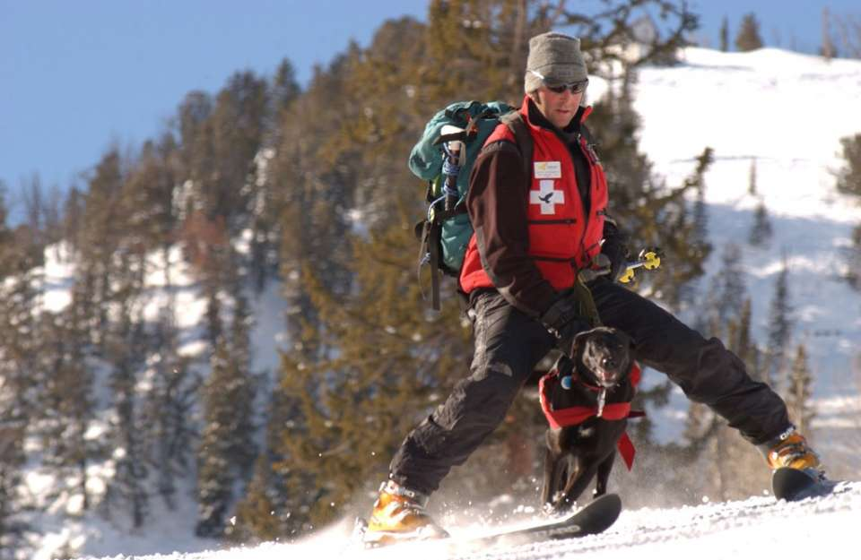 Solitude, Utah, January 31, 2002 -- Solitude ski patrolman Keith Sternfels and his black lab Chaco ski/run down Solitude Mountain. The canine is in training  involved with FEMA's training exercises outside of the Olympics in Salt Lake City. Photo by Andre