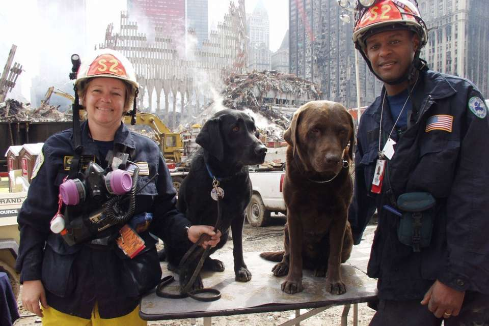 New York, N.Y., September 25, 2001 -- Rescue workers and their canine counterparts take a break from the ongoing rescue and recovery efforts at the site of the World Trade Center terrorist attack in lower Manhattan. Photo by Mike Rieger/ FEMA News Photo