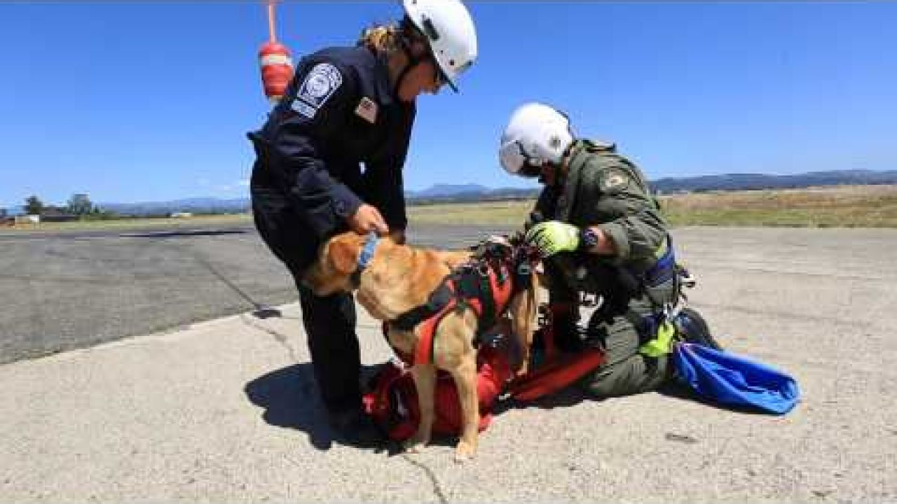 Urban Search and Rescue Task Force train with Sonoma County Sheriff's Helicopter Henry-1