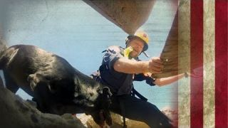 Search and Rescue Dogs   American Dog With Victoria Stilwell