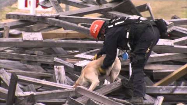 FEMA Disaster Canine Workshop at Disaster City®